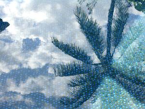 Kailua_pool